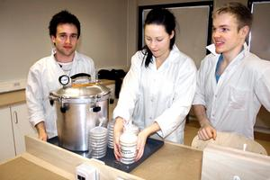 Markus Bruus, Sofia Lilja och Erik Eriksson i NV3b läser en breddningskurs i biologi.  - Det är mycket roligare att labba när vi har fått bra salar, säger de.