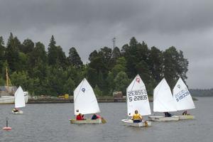 Vid Huseliiharen har Gefle Segelsällskap sitt årliga seglarläger.