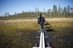 Flera miljoner kronor mer än normalt finns i år till skötsel av  bland annat stugor och leder i länets naturreservat.