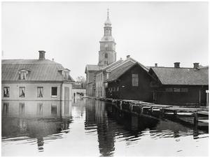 Fisktorget. Foto: Albin Hedling.