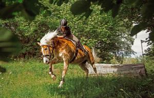 Hemmaekipaget Cornelia Skytt och Garbergsuddens Saga tävlar i Arbottna Horse Show i helgen.