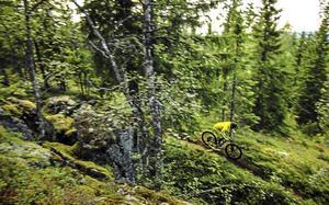 Åkare Jon Bokrantz på väg ner för en av lederna i cykelparken.