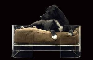 Londonbaserade Wowbow är ett nytt märke som satsar på lyxdesign för husdjur. Den här hundbädden i tjock akrylplats har en kudde i falsk mocka som formar sig efter hur hunden ligger. Finns i flera storlekar och utföranden hos pid.se. Medelstorleken kostar 9 723 kronor.