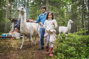 Batoul Fakih, 7, fick tillsammans med Alexander Skoglund leda en av lamorna.