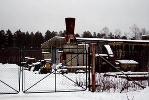 DÖDLIGT GIFT. En tesked av jorden inne på industriplan på Robertsholms gamla sågverk innhåller en dödlig mängd gift. Ändå har saneringen nedprioriterats av länsstyrelsen.