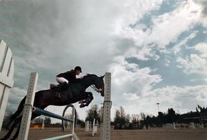 Hopp. Ridsporten blir styvmoderligt behandlad i Västerås, tycker skribenten. Foto: Jesper Malmsten/arkiv