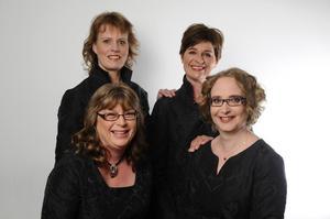 Vokalkvartetten Schola Gothia ger konsert i Sandvikens kyrka söndag 7 februari.