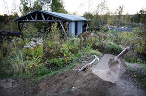 Snart kanske första spadtaget tas för ett villakvarter i det gamla sågområdet på Solsidan. Ägarna ser gärna att kommunen köper området.