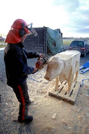 Frihandssågning kräver stadig hand, men Anders och Leif har gjort trädjur förut till både Tegefjäll och Gävle, så det är lugnt.