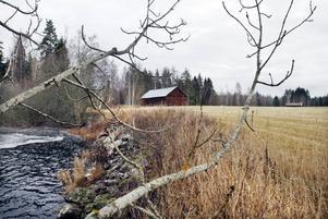 PROMENADSTRÅK. Längs Testeboån planeras en naturstig för promenader. Bostadshusen byggs inte närmare än 100 meter från vattnet.