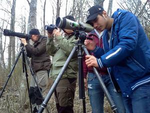 Med kikare fick ungdomarna från Skönsbergs Fritidsgård en närmare blick på Selångeråns bävrar.