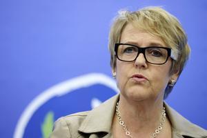 Désirée Pethrus (KD) har fått i uppdrag av regeringen att utreda LSS-systemet.