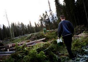Någon brist på jobb möter inte de                        ungdomar som väljer att utbilda sig till maskinförare i skogen. Foto: Lars-Eje Lyrefelt