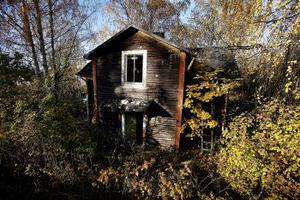 Den här byggnaden och ett uthus upplevs som en styggelse på Norra Alnön. Fastigheten har inte kunnat rivas eftersom kvinnan som äger stället inte gått att nå.
