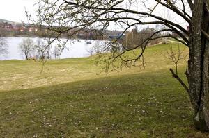 Inte förstöra. Målet är att utveckla Älvhagen utan att förstöra naturmiljön.