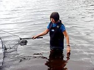 Foto: JÖRGEN LARSSONLedsen. Agnes Janson har letat efter sin bortsimmande sköldpadda Ninja sedan i onsdags. Med hjälp av håv och sjödräkt söker hon genom vattnet närmast stugan vid Öjaren.