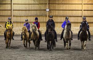 Svenska hästnäringen omsätter cirka 45 miljarder kronor vilket motsvarar cirka 28 000 heltidsarbeten per år, skriver Kristian Krassman.