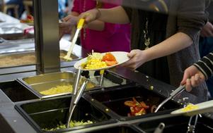 Precis som tidigare i år har Tierps kommun åkt på en kritikstorm på grund av sin matsedel i skolan.