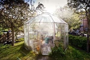 Det finns två växthus på gården där de som är intresserade kan odla.