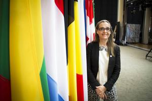 Fikru Maru har fastnat i en maktkamp mellan olika falanger i Etiopien bedömer EU-parlamentariker Bodil Valero (MP).