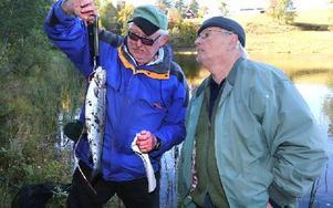 Bruno Bergfeldt väger regnbågen och Egon Lindell ser intresserat på. 1,2 kilo väger den. Foto: Johnny Fredborg