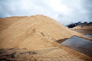 Spånhögarna i Norrsundet ska bli pellets som ger värme till villor och lägenheter och intäkter till Stora Enso.