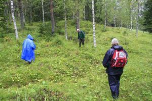 Sven Norman visade runt flera nyfikna och naturintresserade på den gamla ängsmarken i Rigberg.