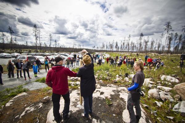 Jan-Inge Tobiasson (i rött), naturvårdare på länsstyrelsen, hjälper landshövdingen Minoo Ahktarzand vid invigningen av naturreservatet Hälleskogsbrännan. Till höger står Ulrika Mogren, kommunikatör på länsstyrelsen.