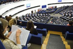 Svenskarna i Europaparlamentets utskott har en tendens att klustra sig samman.