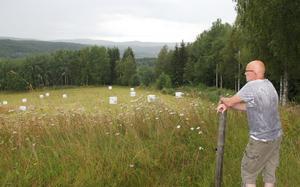 Torbjörn Sundberg ser ut över marken där fastigheterna planeras byggas.