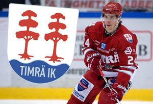 Andreas Molinder väljer att stanna i Timrå trots intresse från utländska klubbar.