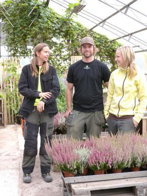 Sara Backlund, Per Danielsson och Caroline Eriksson på Mora Trädgård är överens: nu ska man skörda och njuta av allt gott och alla fina färger i trädgården.