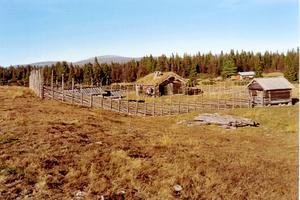 Vy över delar av den vackra fäbodvallen Ljåbodarna. I fonden skymtar Oviksfjällen.