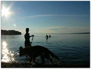 Sommaren 2014 fick man många bad i Storsjön.Bilden tagen vid Bynäset Foto: Mona Jacobsson