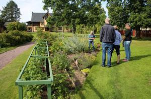 Det finns tre stora land, där det odlas grönsaker, ettåriga blommor och potatis och för varje år skiftas odlingarna för att undvika att jorden blir uttröttad, berättade trädgårdsmästare Annika Lindgren.