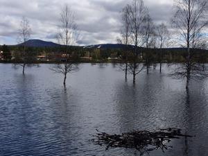 Vattennivåerna i Idresjön förväntades kulminera redan på onsdagen.