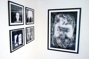 I härbret visas Lisa Karlgrens fotografi.
