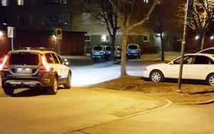 Flera polispatruller samlades i området så gott som omedelbart efter skottlossningen.