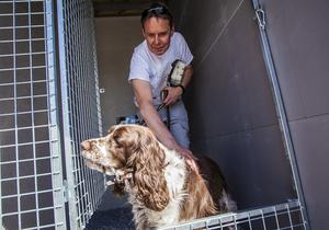 Per-Erik Dillner tycker att det är bra att hundgården byggts så att hunden Tia kan vänta där när matte handlar.