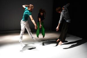 Flavia Devonas är utbildad på Royal Academy of Dance, Peter de Vuyst och Nathan Jardin på P.A.R.T.S. i Bryssel och SEAD i Salzburg.