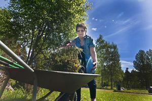 Lillsjöns trivselförening och Gävle kommun tänker teckna ett avtal om brukarsamverkan. Eva Malm har fått löfte om en sarg till en boulebana som tack för det ideella arbete de som bor där gör när de klipper gräs och rensar buskar i parken.