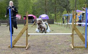 Alice klarar hindret. Carin Pettersson hejar på sin hund.