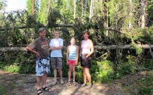 Familjen Warg-Back som bor bara någon kilometer i från Nedre Valsan-sjön tog en tur i området där de bor på måndagmorgonen för att titta på förödelsen. På Lomvägen var det flera granar som hade vält över vägen.– Det var en väldig kraft i ovädret, berätt