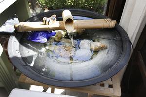 I vattenspelet bor en blå sköldpadda.