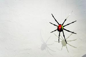 Jacob Danhards färgglada spindlar klättrar uppför tråden.