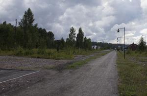 I närheten av kafferosteriet i Söderhamn hittades katten på fredagsmorgonen.
