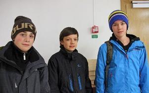 De försökte påverka, Alexander Gustafsson, Adam Steen och Oliver Rolands från Insjöns skola. Men beslutet blev nedläggning av högstadiet i höst. FOTO: EVA HÖGKVIST