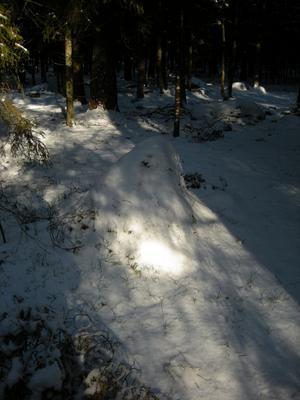 Det vaknade till en stund och kikade på oss i Björnöskogen, mitt på dagen. Min fru och jag förstod att spöket tagit miste på 12 och 12. Det somnade snart igen.