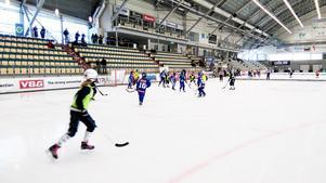 IFK Vänersborg siktar på att göra Fridacupen till ett årligt evenemang.