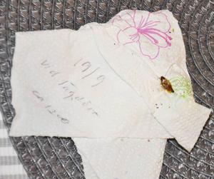 Kackerlackor i olika storlek har Agneta varit noga med att skriva upp datum och ibland även klockslag när hon hittade dem.